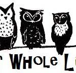 OWl graphic-1