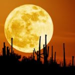 Hot Moon Drum Circle is Friday, July 7